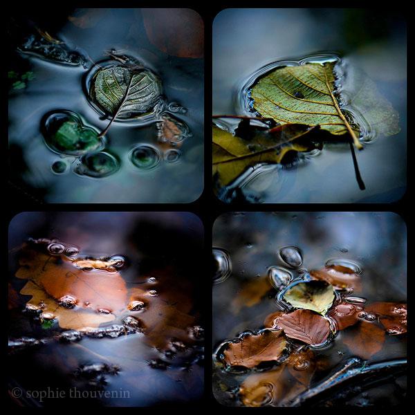 http://stillme.free.fr/blog/118.jpg