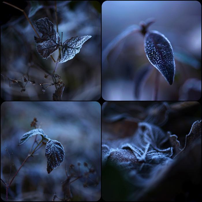 http://stillme.free.fr/blog/124.jpg