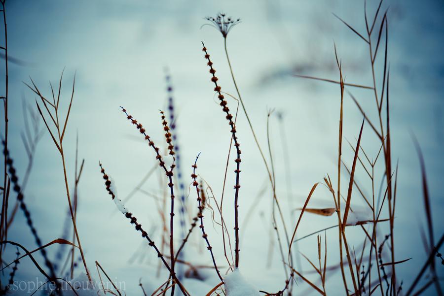 http://stillme.free.fr/blog/133.jpg